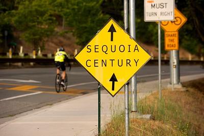 (42) 2014 Sequoia Century DSC_0424