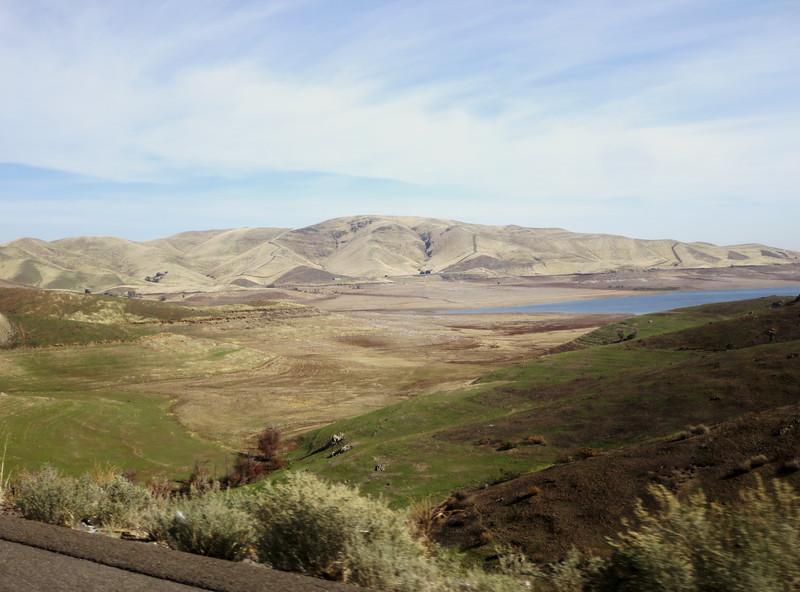 San Luis Reservoir--everything green is usually underwater