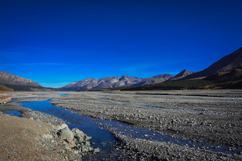 Denali-National-Park-83.jpg