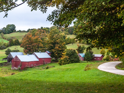 Vermont Foliage 2015