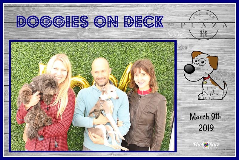 Doggys on Deck34.jpg