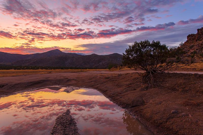 Reflection Sunset In The Anza-Borrego Desert