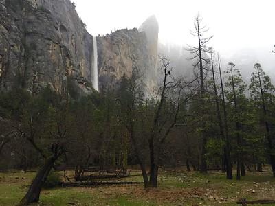 Yosemite 2016-03-13