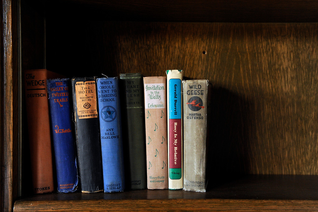 . PINE, CO - APRIL 18: Books found in a box on the property sit on a shelf at Baehrden Lodge on April 18, 2014, in Pine, Colorado. (Photo by Anya Semenoff/The Denver Post)