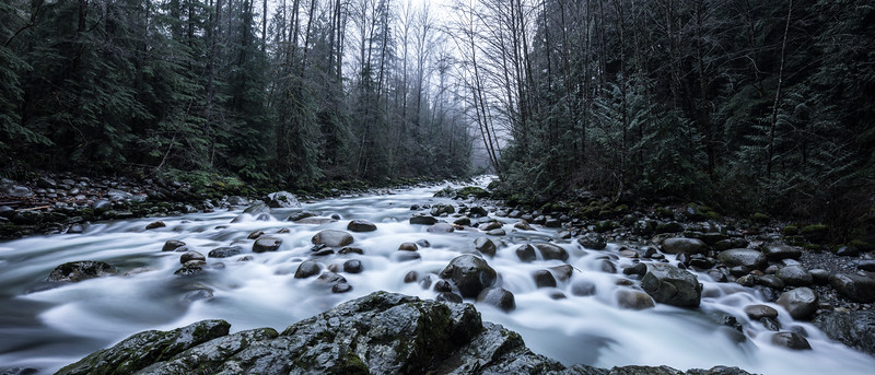 Lynn Canyon_Water Movement and Rock_HR-.jpg