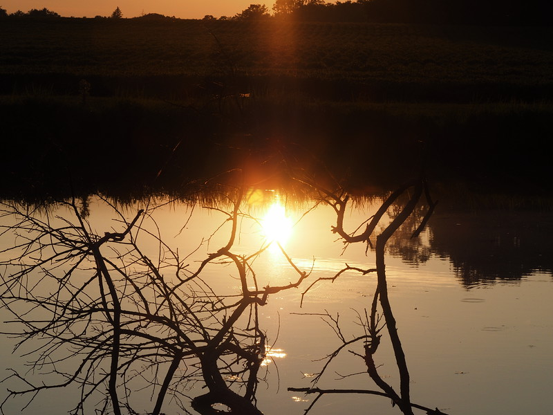 Clayton pond sunset.JPG