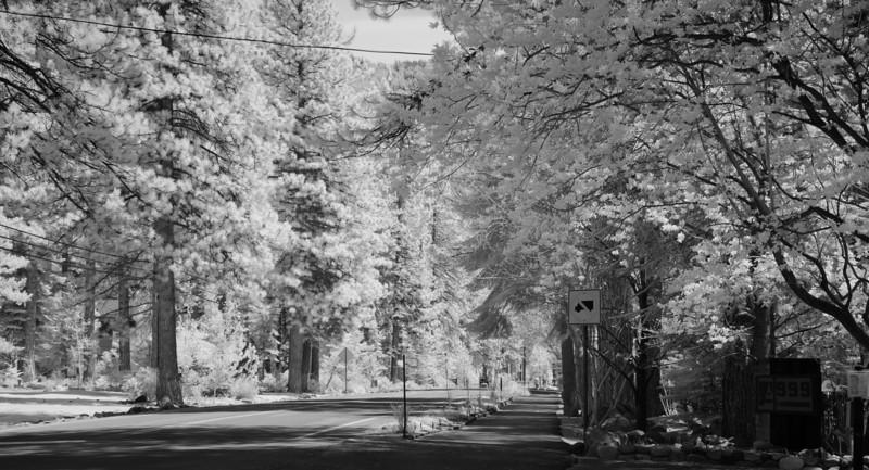 tahoe-2003.jpg