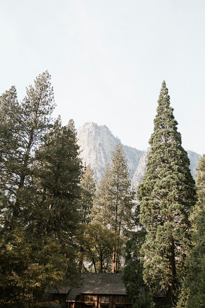 Forest_City_Photographs_Honeymoon_Califonia_San_francisco_Yosimite-159.jpg