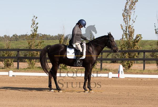 Rider 210