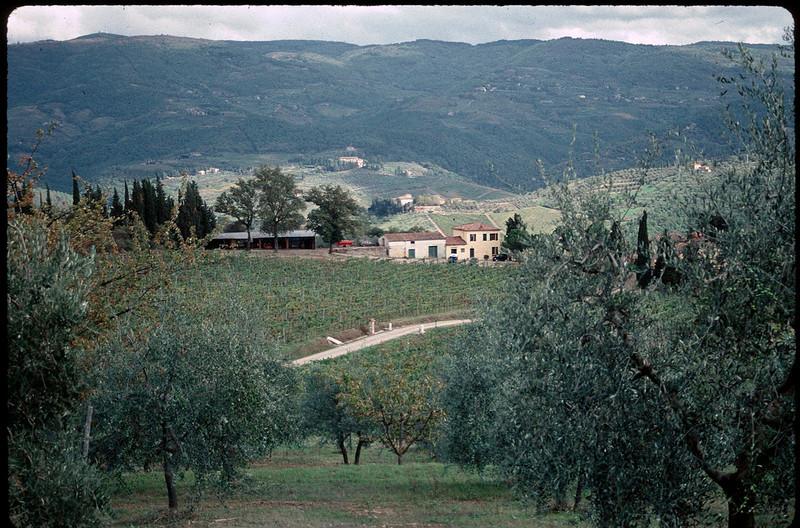ItalyNapa1_027.jpg