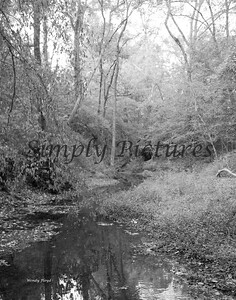 Banita Creek094 B&W