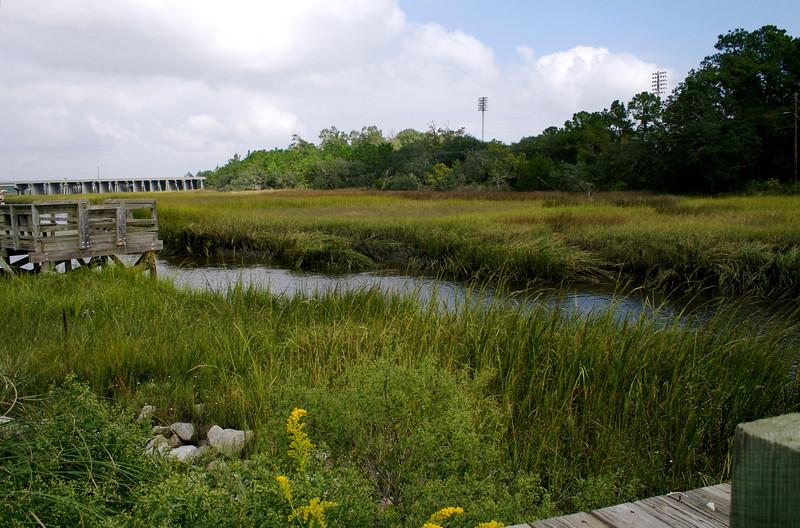 Daniel Island Marsh XVIII