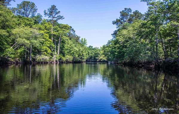 Black River Float Trip