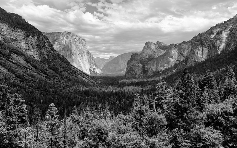 Yosemite Valley BW-.jpg
