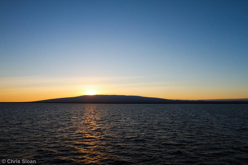 Isabela, Galapagos, Ecuador (11-23-2011) - 671.jpg