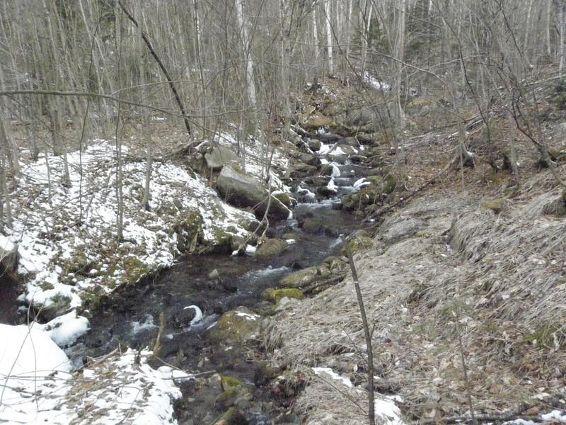 Crossing the brook.JPG