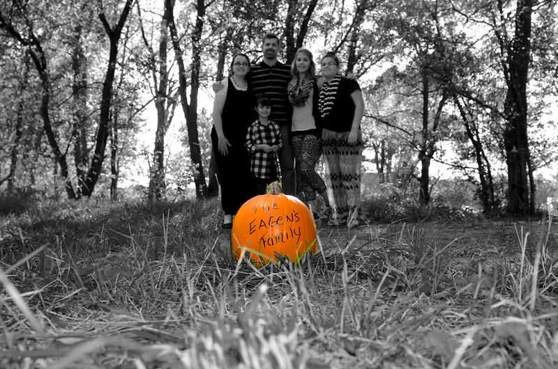 Just Pumpkin.jpg