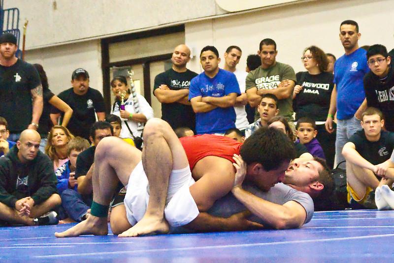 MMA_Houston_20090418_0667.jpg