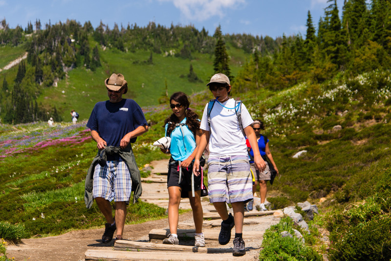 Ian, Nisha, and Nikhil hike back down the trail