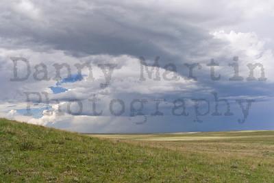 Prairies, Deserts, & Sagebrush Steppe