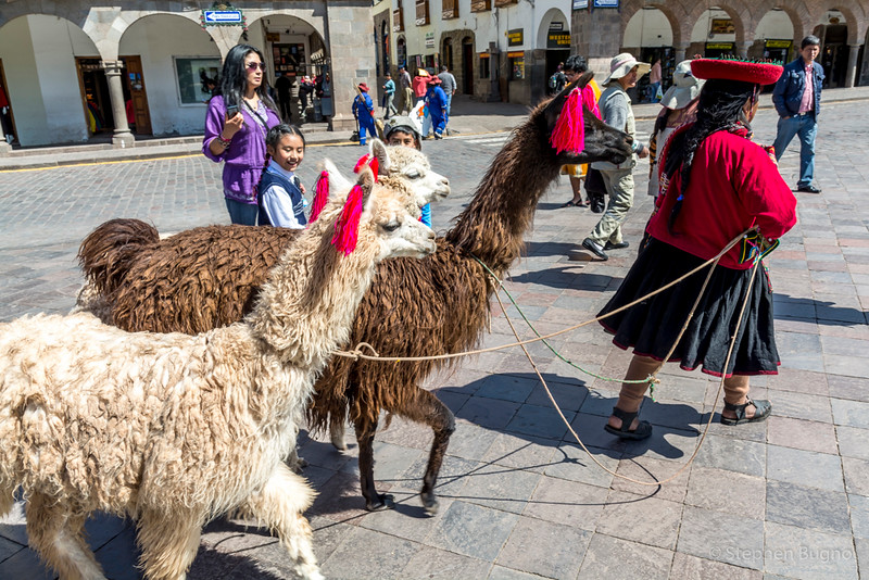 Cusco-2805.jpg