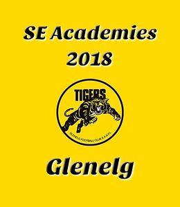 SE Academies - 2018
