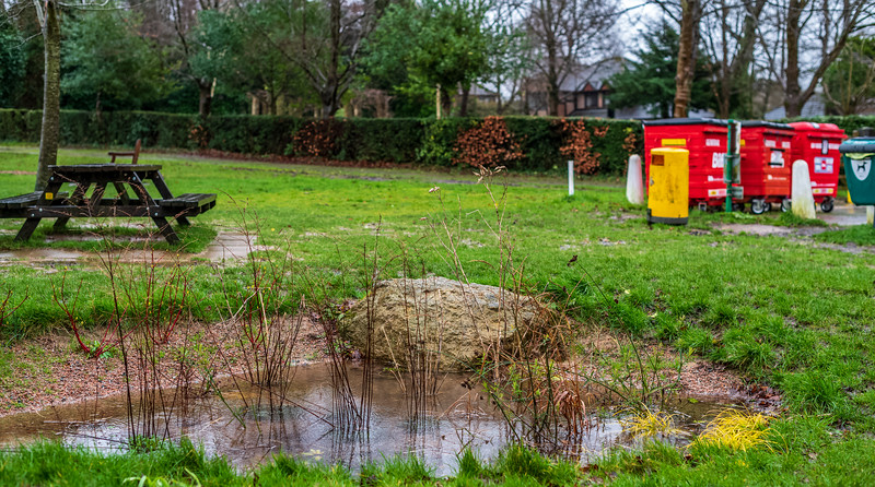 This pond is helping - a little