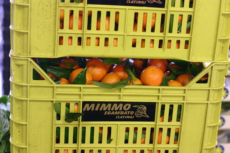 oranges_2098496878_o.jpg