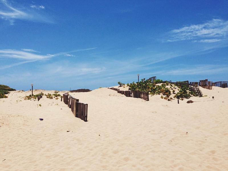 2014 • Playa Poza de Teodoro / Isabela, PR