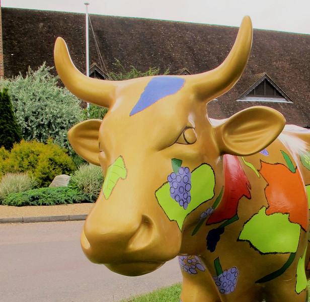 cow 2a closer