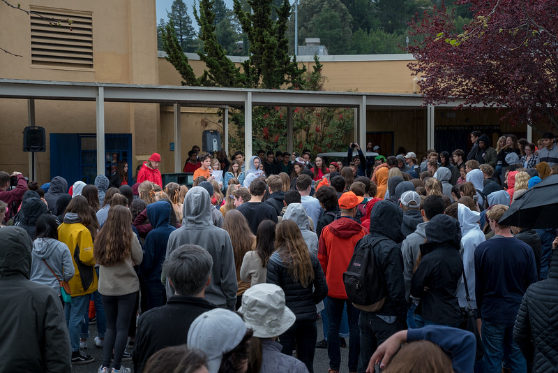 Tam and Redwood Walkout (78 of 91).jpg