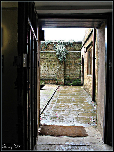 Rainy Morning View 