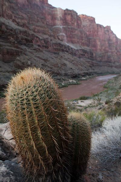 Grand Canyon October-0916.jpg