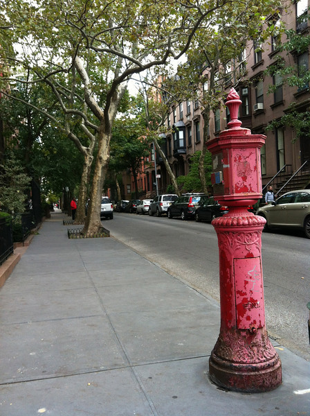Brooklyn Heights my neighborhood on Remsen Street