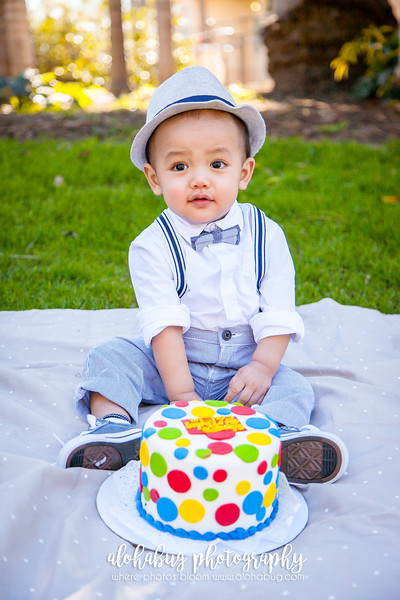Balboa Park Cake Smash 1 Year Old Birthday Photos