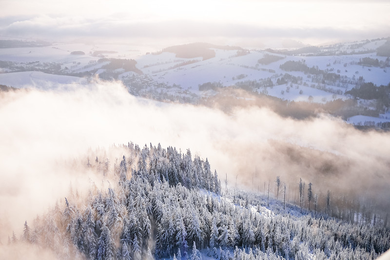 fog-in-snowy-forest-winter-scenery-picjumbo-com.jpg