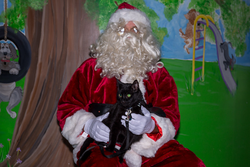 Pet Pictures With Santa-3.jpg