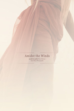 In The Midst of Winds