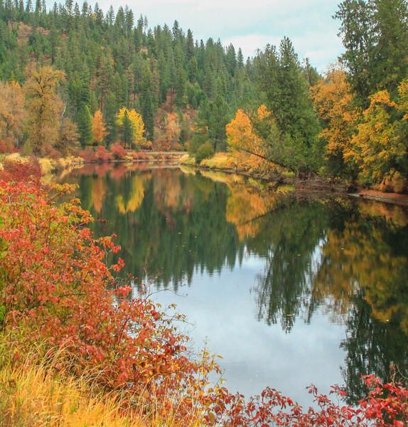 fall 2019 st maries river-1682.jpg