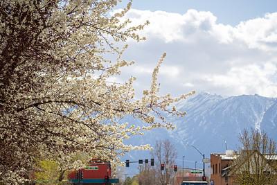 Carson Valley - Textures