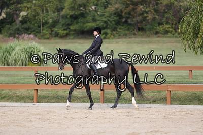 Hunter Ring: Beginner Rider Equitation