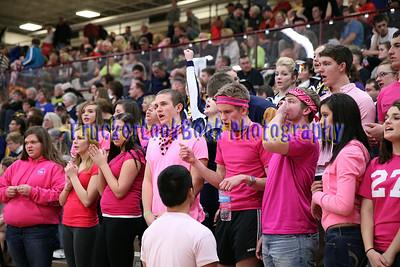 2013-14 Fans, Cheer & Fun Stuff