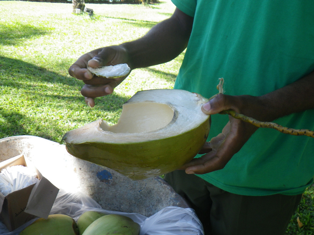 . Janet Podolak/JPodolak@News-Herald.com<p>                                                                               A man with a wheelbarrow full of coconuts plies the grounds of Coconut Bay Resort offering coconut water and jelly from fruit he lops open with a machete.