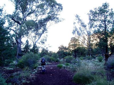 The Heysen Trail - Australia