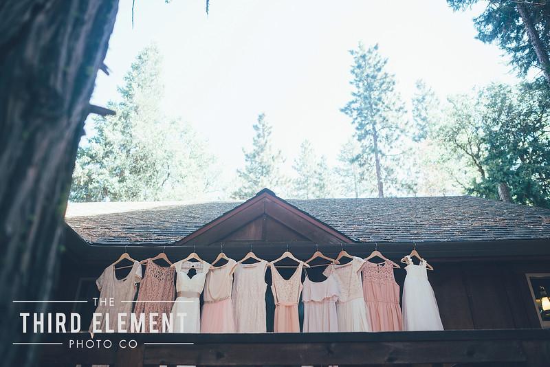Third Element Photo Co Brittney + Errol Yosemite Wedding Hetch Hetchy San Francisco_0005.jpg