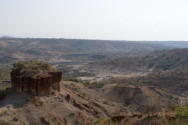 Serengeti #1
