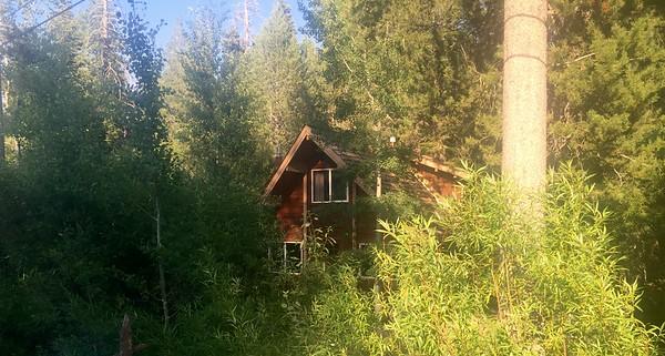 845 Mckinney Rubicon Springs