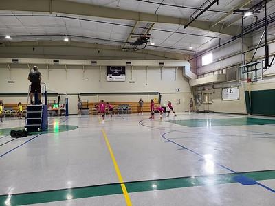 Flamingo Volleyball 2020