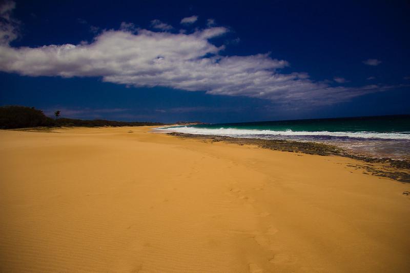 molokai beach.jpg