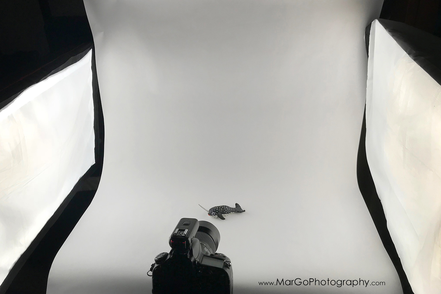 two lights white background product photography setup
